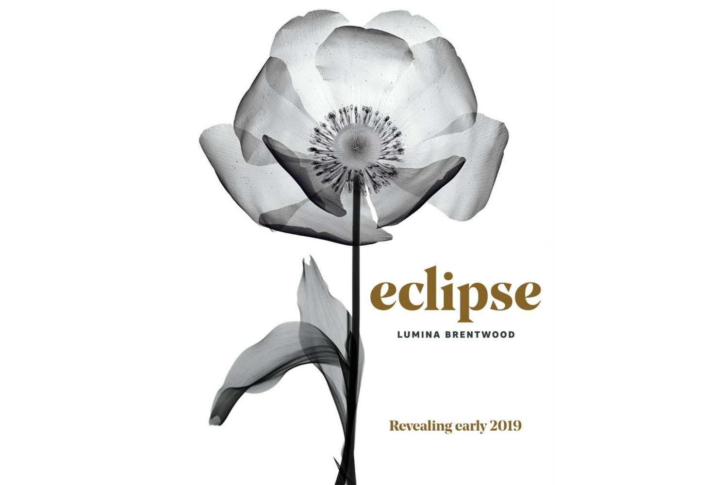 Eclipse at Lumina Brentwood Burnaby Centre Condo Presale 2019 Logo
